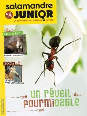 Salamandre junior, la revue des explorateurs nature de 8 à 12ans