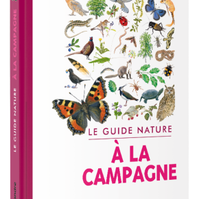 Le Guide nature : à la campagne