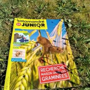 Salamandre junior, la revue des explorateurs nature de 8 à 12 ans : juin-juillet2018