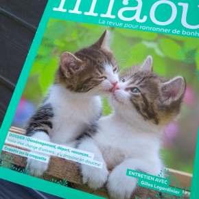 Miaou, la revue pour ronronner de bonheur : juin-juillet-août 2018