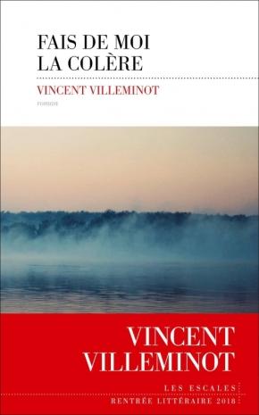 Fais de moi ta colère de VincentVilleminot