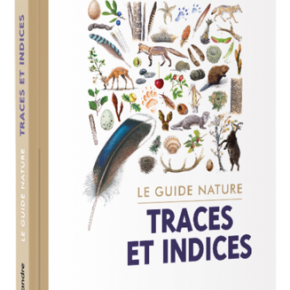 Le Guide nature : Traces et indices