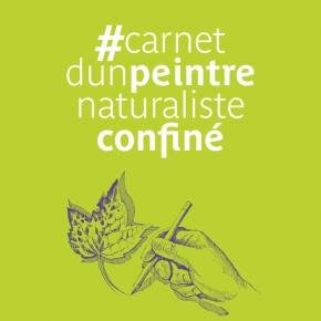 #carnetd'unpeintrenaturalisteconfiné de LorenzoDotti