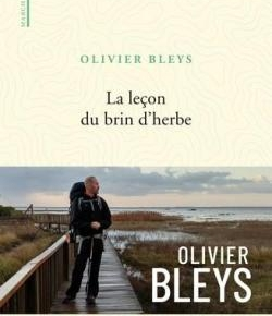 La Leçon du brin d'herbe d'OlivierBleys