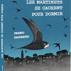 Les Martinets se cachent pour dormir de FrancoSacchetti